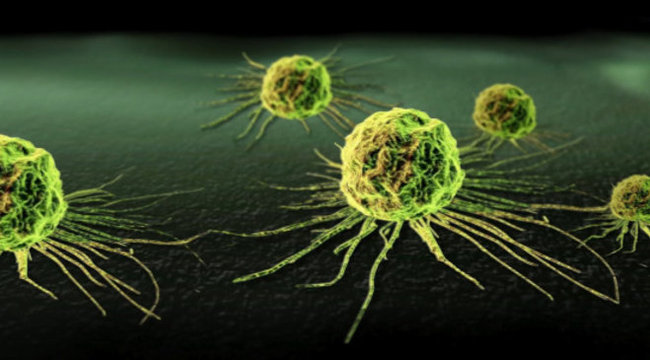 bármilyen rák gyógyítható aiet fascioliasis
