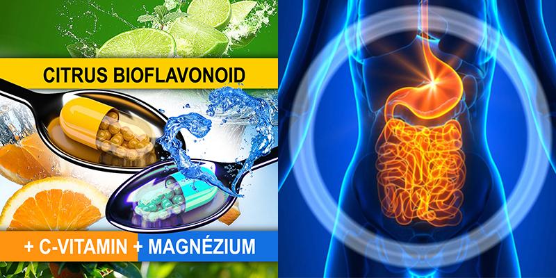 vastagbél méregtelenítő vitaminok helmint készítmények felnőtteknek