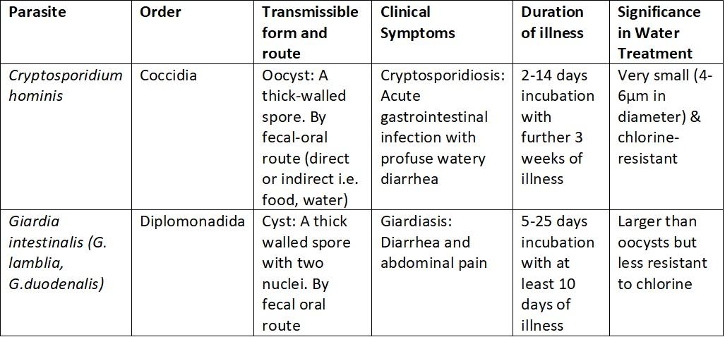 giardia cryptosporidium ag torokrák és humán papillomavírus hpv