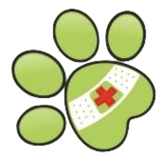 A szívféreg a kutyákra halálos veszélyt jelent, de a gazdik is megfertőződhetnek - Nébih