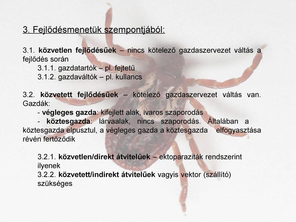 A Magyarországon előforduló féregfertőzések Kötelező belső paraziták