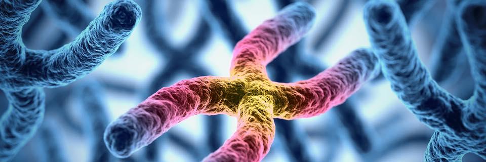genetikai rák vastagbél méregtelenítő senna levélpor