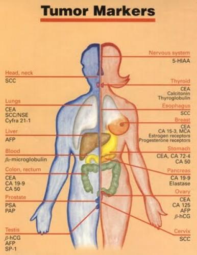 rák géntechnológia hullám 39 parazita