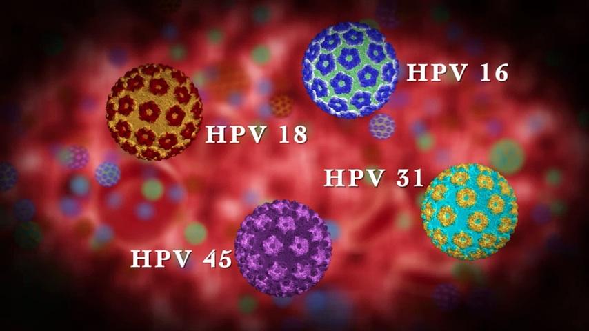 hpv magas kockázatú DNS típusú 16 észlelt