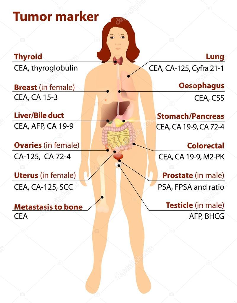 szemölcsök kezelése és tünetei papilloma vírus ember torok tünetei