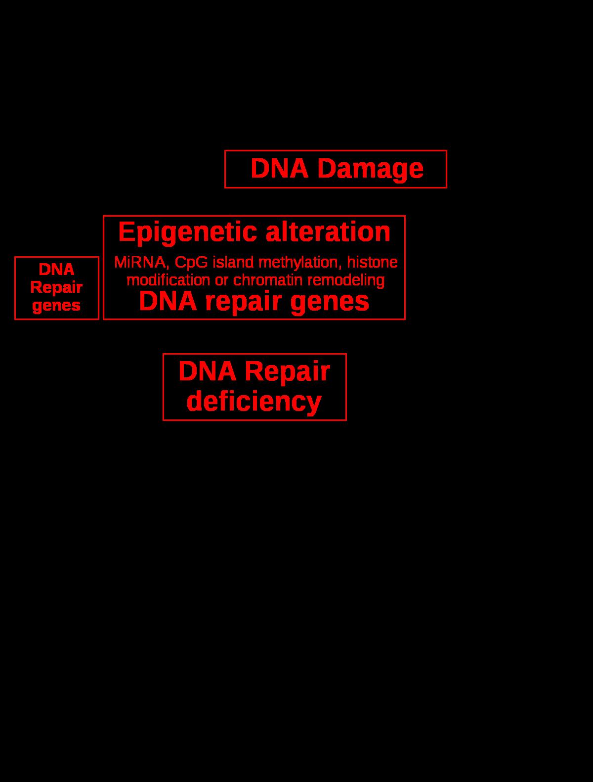 hpv oropharyngealis rák kora