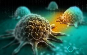 Tech: Tudományos áttörés: meggyógyították a második AIDS-es embert, aki rákos is volt | edesenegeszsegesen.hu