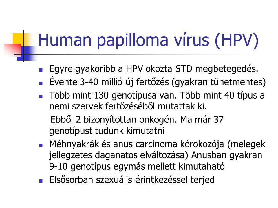 papillomavírus zsiráf tricocephaly asszonyok