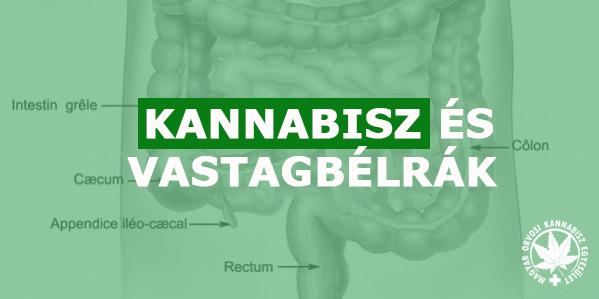 féregeltávolítás és jelszó parazita tabletták a labdában