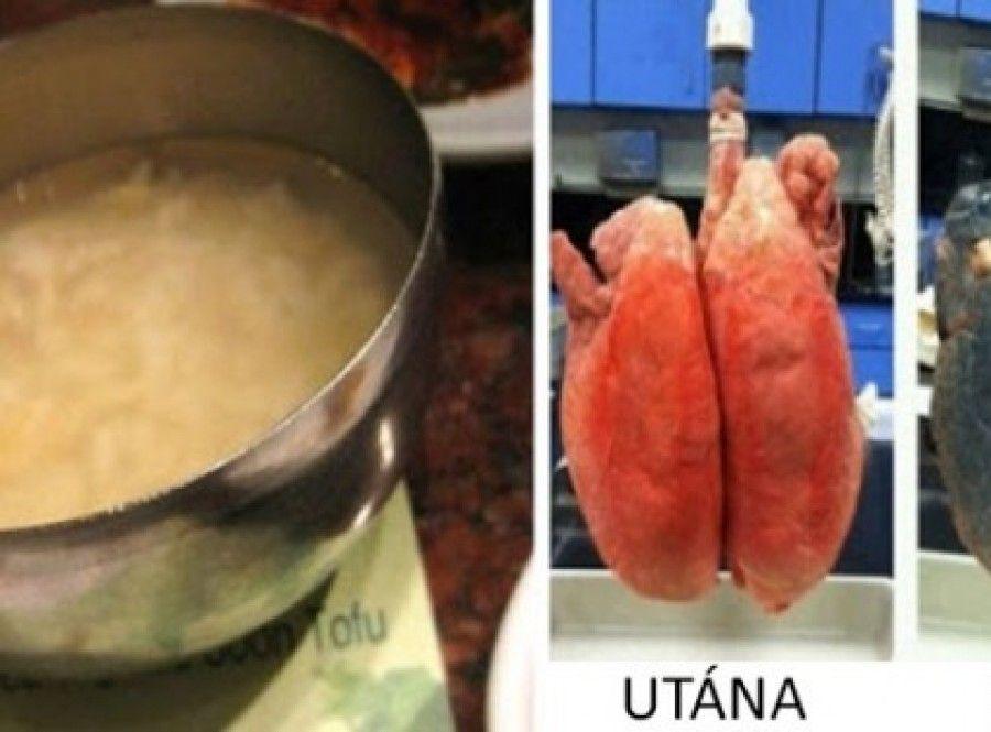 méregtelenítő receptek 3 nap hpv nedir tedavisi