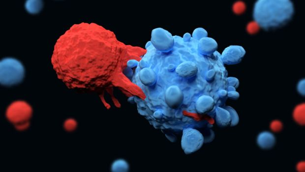 papillomavírus fertőzés prevalenciája palermo papilloma vírus vakcina