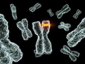 genetikai rák