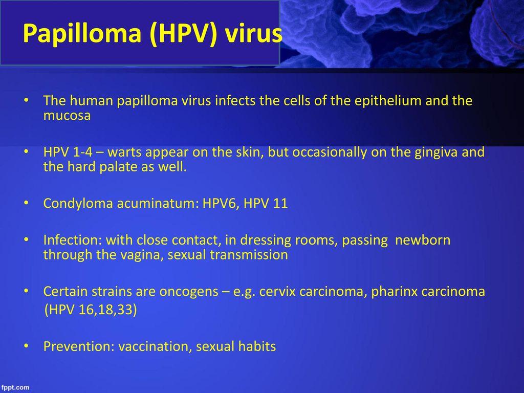 papilloma vírus zárványtestek