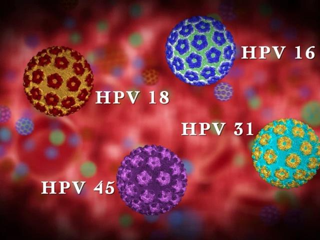 papillomavírus 4