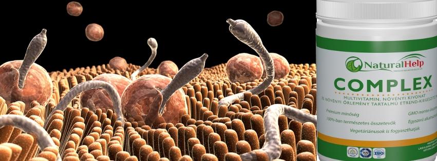 Gyógynövények a paraziták ellen. Bélféreg – Hogyan szabaduljunk meg tőle? Parazita ellen tea
