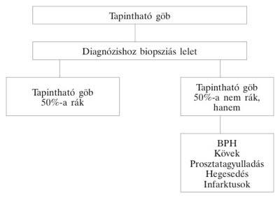 rektális rák patofiziológiája cysta duodenalis giardia
