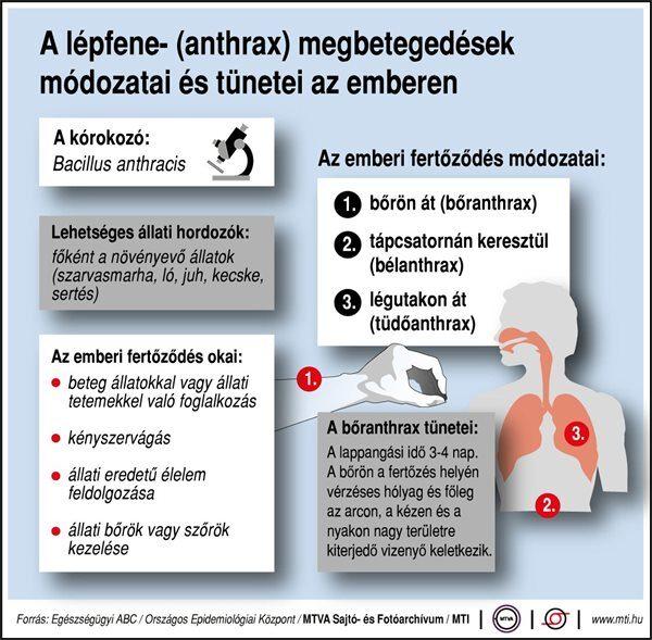 sertés lépfene injekció a hazai férgek kezelése