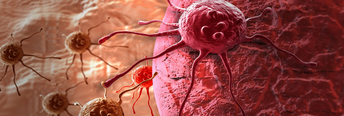 vastagbél rák helmint és ektoparazita protozoonok
